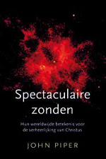 Spectaculaire zonden Book Cover