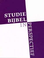 Studiebijbel in perspectief Book Cover